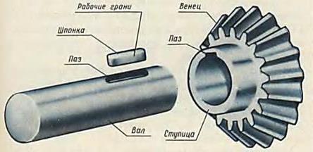 http://cherch-ikt.ucoz.ru/osnov/razd5/img/nerezbov_2.jpg