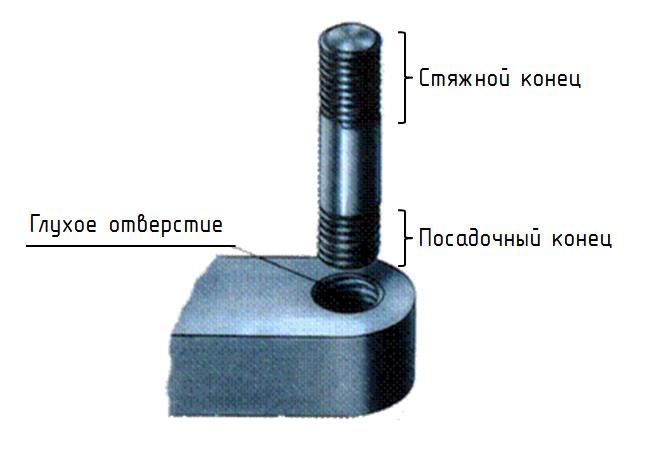 http://cherch-ikt.ucoz.ru/osnov/razd5/img/ras-emnie_res-bovie_17.jpg